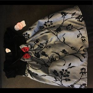 NWT Toddler Special Occasion dress 3T